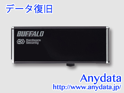 BUFFALO バッファロー USBメモリー RUF2-HSCL16GT 16GB