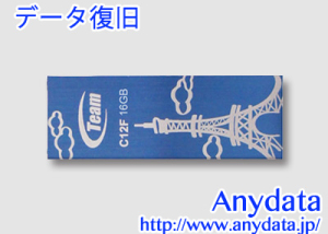 TEAM USBメモリー TC12F16GL01 16GB