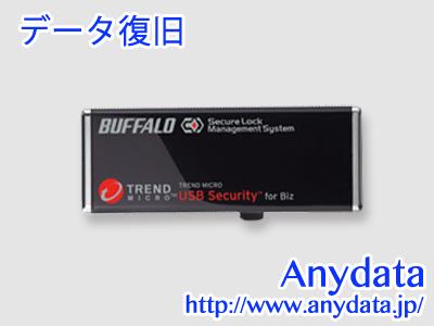 BUFFALO バッファロー USBメモリー RUF2-HSC-16GTV 16GB