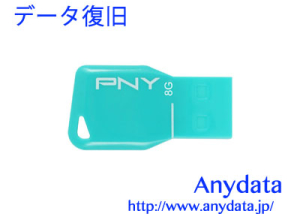 GREEN HOUSE グリーンハウス USBメモリー PNY UFDPKYS-8G 8GB