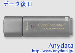 Kingston キングストン USBメモリー DataTraveler