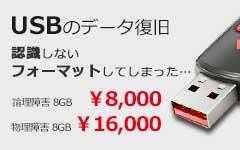 USBメモリーデータ復旧