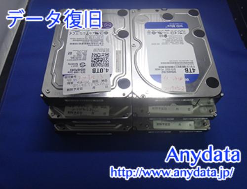 RAID50 3TB HDD 6台 24TB(Model NO:WD4002FYYZ-01BXBL)