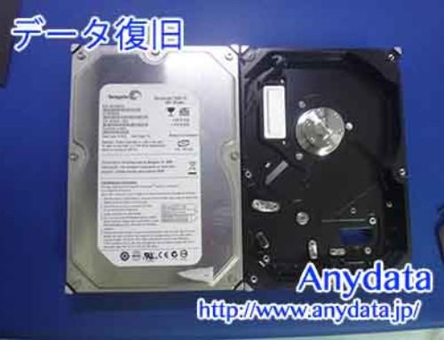 Seagate HDD 320GB(Model NO:ST3320620A)