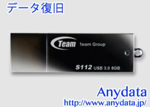 TEAM USBメモリー TS11238GB01 8GB