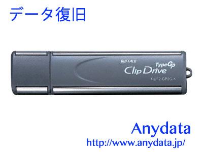 BUFFALO バッファロー USBメモリー RUF2-GP2G-K 2GB
