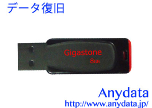 Gigastone ギガストーン USBメモリー GJU28G 8GB