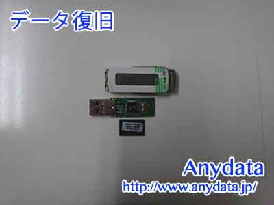KINGSTON USBメモリー 1GB(Model NO:DataTraveler)